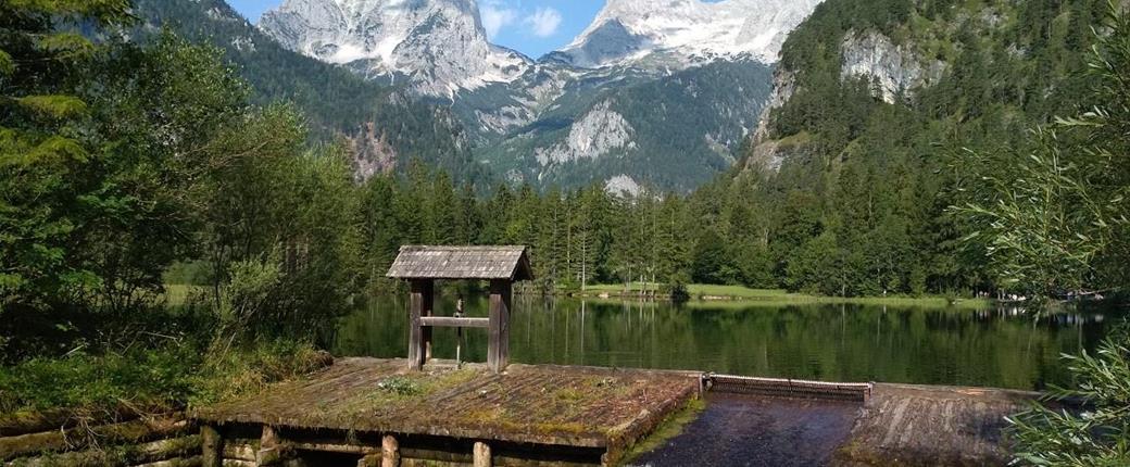 Národní park Kalkalpen - vápencový svět hor